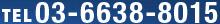 TEL 03-6638-8015
